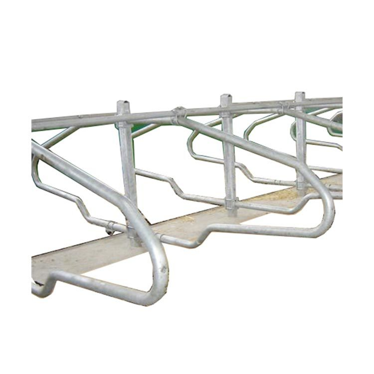Galvanized free stall for cow dairy cubicle use