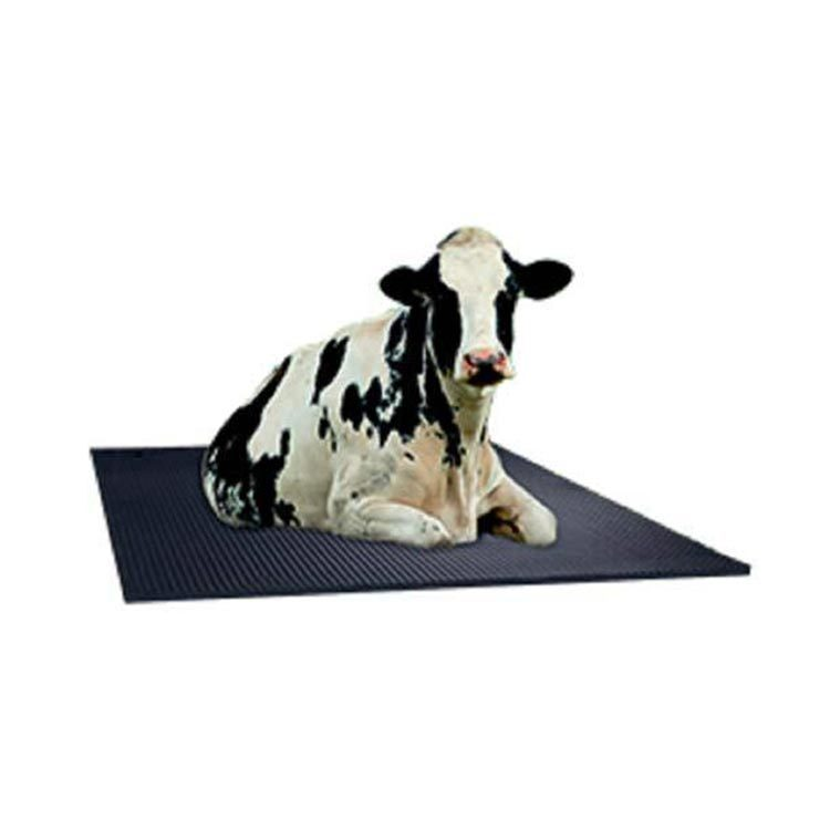 Dairy cow rubber mat for wholesale