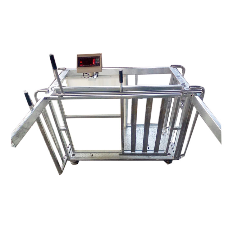 Galvanized sheep weighing scale crush with displayer