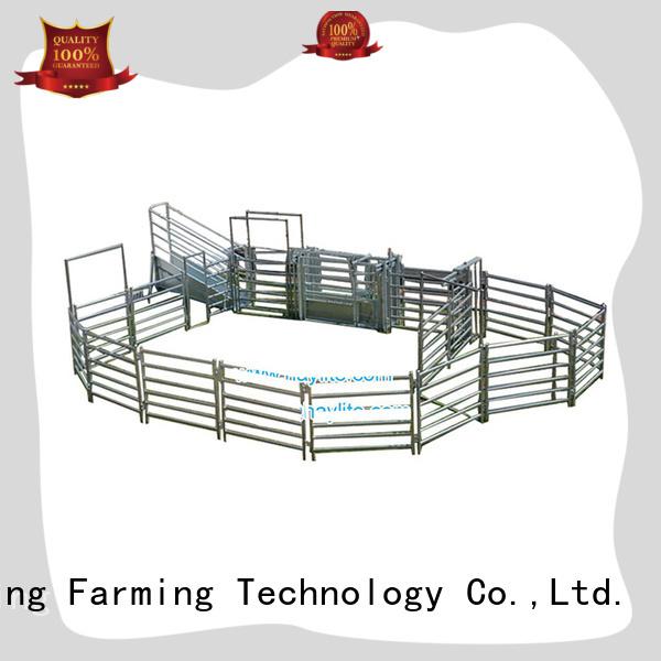 Desing cattle head bail latest for livestock