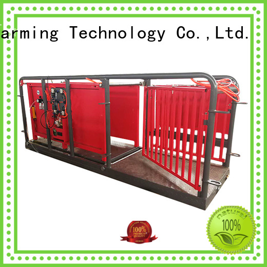 Desing best workmanship sheep equipment factory direct supply favorable price