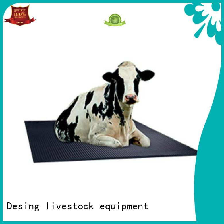 Desing popular livestock water trough stainless fast delivery