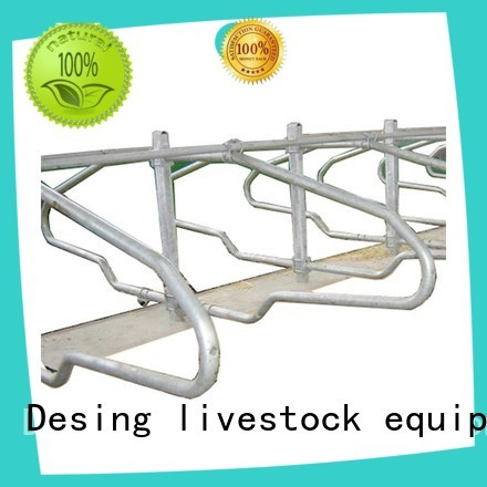 Desing livestock water trough industrial for wholesale