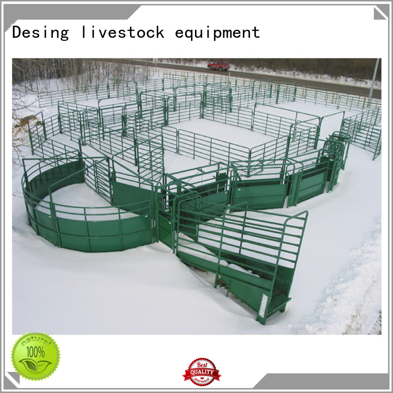 best workmanship sheep loading ramp factory direct supply for wholesale