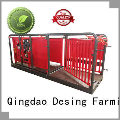 Desing sheep handling system factory direct supply high quality