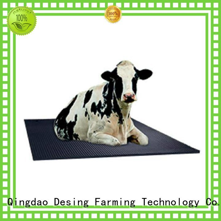 Desing popular cow milking machine fast delivery