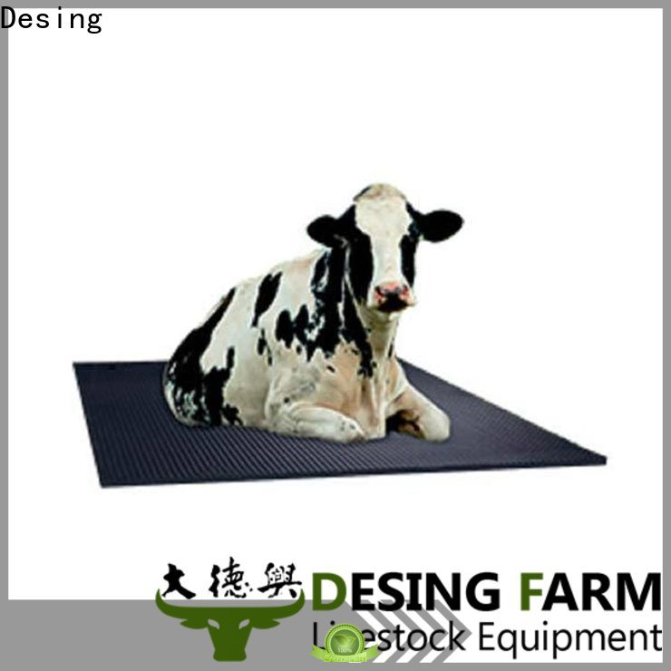 high quality cow equipment