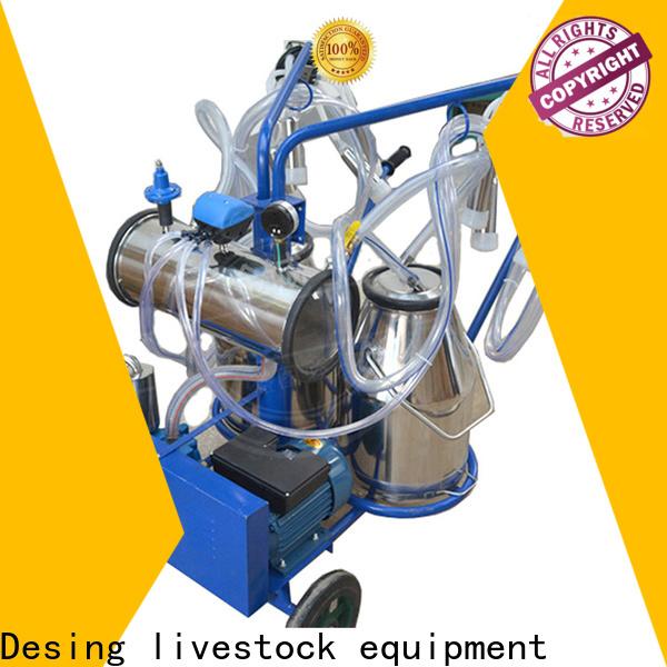 Desing popular cow cubicle livestock handling for cow handling