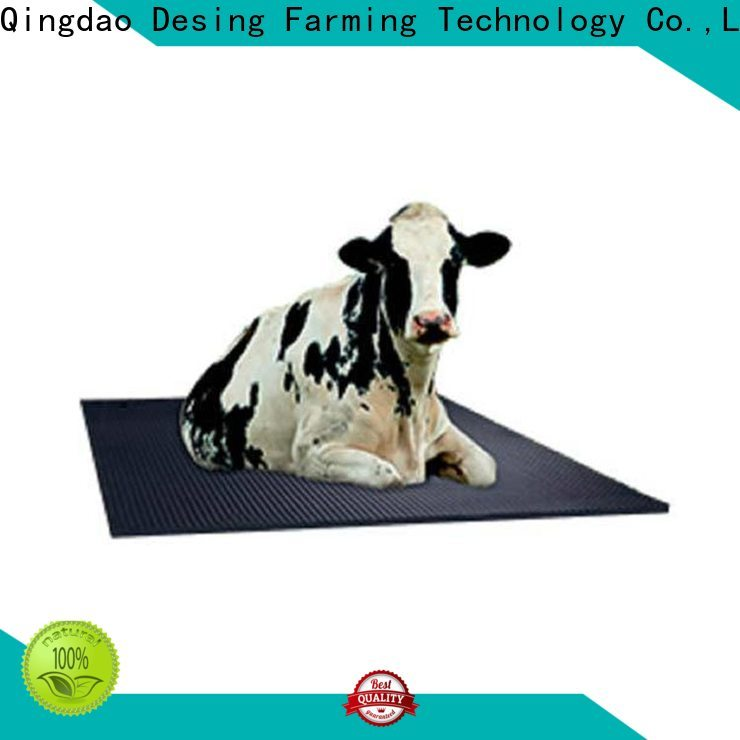 high quality cow brush livestock handling fast delivery